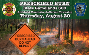 Prescribed Burn Planned for Archbald Mountain